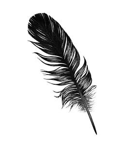 rysunek pióra, towarzyszący zapisowi na stoicki newsletter
